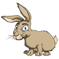 Le signe chinois : Lapin